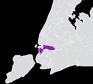 New Yorks 25th State Senate district American legislative district