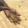 Niger Farm sand tv 16aug05.jpg