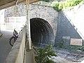 Nitteler Tunnel.jpg