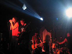 Nonpoint live (2005)