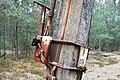 Notec Forest, Mialy, Debogora 01.JPG