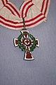 Nursing medal (20551665628).jpg