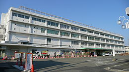 Odawara Kozu Station 2008 march.jpg