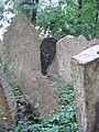 Old Jewish Cemetery, Prague 019.jpg
