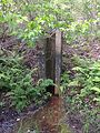 Old pond drain UMFS.JPG