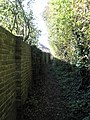 Old wall backing onto the footpath to Prinsted Lane - geograph.org.uk - 1026508.jpg