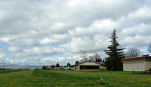 Olinger Strip - near Hillsboro, Oregon.JPG