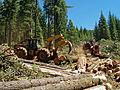 Oregon BLM Forestry 05 (6871711709).jpg