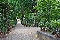 Orto Botanico Florence - panoramio (3).jpg
