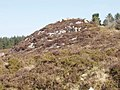 Outcrop on Forth Mountain - geograph.org.uk - 1240249.jpg