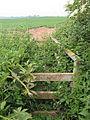 Overgrown stile - geograph.org.uk - 463275.jpg