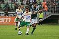 Palmeiras x Chapecoense (41830704291).jpg