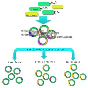 Pathogenomics - Wikipe...