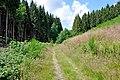 Parc naturel des deux ourthes04.jpg