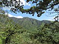 Paro Taktsang, Taktsang Palphug Monastery, Tiger's Nest -views from the trekking path- during LGFC - Bhutan 2019 (307).jpg