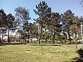 Parque de Gerizes.jpg