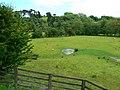 Partridge Hill, near Goathland - geograph.org.uk - 848016.jpg