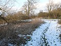 Path by The Trent in North West Leicestershire - geograph.org.uk - 1156099.jpg