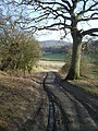 Path to The Ridgeway - geograph.org.uk - 650095.jpg