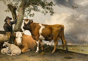 Paulus Potter - The painting The Young Bull (1647) is in the collection of the Mauritshuis