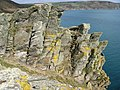 Pencarrow Head cliffside rocks - geograph.org.uk - 366830.jpg