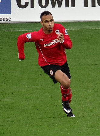 Peter Odemwingie - Odemwingie playing for Cardiff City