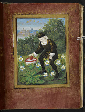 Petit Livre d'Amour - The miniature on f. 6r.
