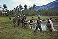 """Photograph of Members of Company """"A"""" Return to Base Camp with Viet Cong Prisoners during Operation Thayer II - DPLA - 2b6a5f5b6e7cdadf8f64ecd932d4e362.jpg"""