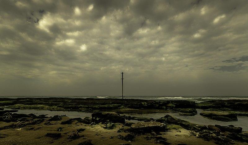 חוף הצוק