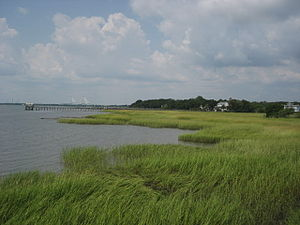 Mount Pleasant, South Carolina - View from the old Pitt Street Bridge in Old Village