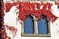 Poertschach Schloss-Hotel Leonstein Doppelfenster im Herbst 17112012 823.jpg