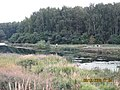 Pond, people, litter - panoramio.jpg