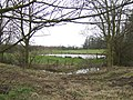 Pond at Blyborough Grange - geograph.org.uk - 339407.jpg