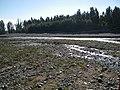 Popeta, Río Claro. - panoramio (1).jpg