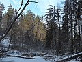 Prielom v zime - panoramio (1).jpg