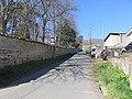 Quincié-en-Beaujolais - Route du Petit Saint-Cyr (mars 2019).jpg