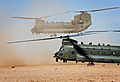 RAF Chinook Helicopters MOD 45157581.jpg