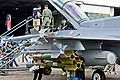 RSAF F-16D Block 52+ Fighting Falcon with Conformal Fuel Tanks 03.jpg