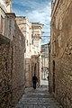 Ragusa (39520202762).jpg