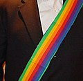 Rainbow Sash Movement Logo.jpg