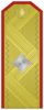 Rank insignia of Бригаден генерал of the Bulgarian Army.png