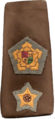 Rank of a South African Defence Force commandant.png