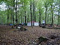 Re-occupation village in the Hambach forest 01.jpg