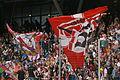 Red Bull Salzburg gegen SV Ried 37.JPG
