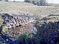 Remains of bridge to Whitehillock (ruined) - geograph.org.uk - 254574.jpg