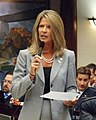 Representative Debbie Mayfield debates the budget on the Florida House floor.jpg