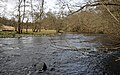River Almond - geograph.org.uk - 725423.jpg