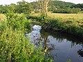 River Amber - Sawmills - geograph.org.uk - 194522.jpg