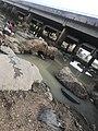 River OKe.jpg