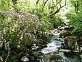 River Teign, Gidleigh Park - geograph.org.uk - 18703.jpg